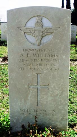 Albert  E Williams