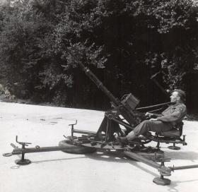 Assembled Polsten 20mm Cannon