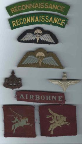 Insignia worn by Tpr F Silvester