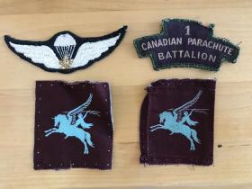Joseph Ledoux airborne badges