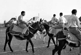 Members of 2 PARA playing polo, Libya, 1959.