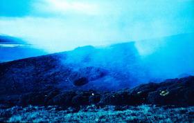 The Gorse Gully, Darwin Hill, near Goose Green, 29 May 1982.