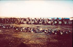 Argentine PoWs being marched off to the sheep sheds after the surrender at Goose Green, 29 May 1982.