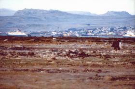 MV Norland, Stanley, Falklands, 1982.