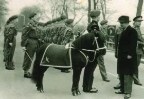 1 Para Mascot, 1957