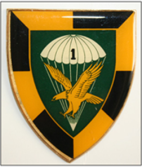 South African 1st Parachute Battalion Unit Insignia with eagle icon
