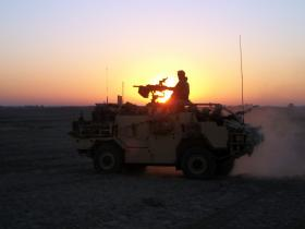 Jackal at sunset, Herrick XIII, c.2011.