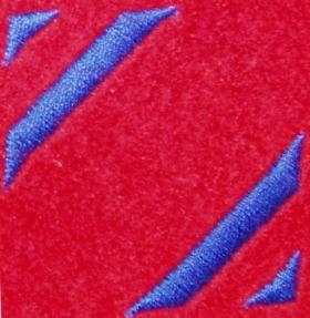 131 Independent Parachute Squadron RE (V) DZ Flash (2nd Pattern)