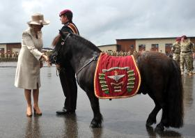 The Duchess of Cornwall with Pegasus, Medals Parade, Colchester, 2011