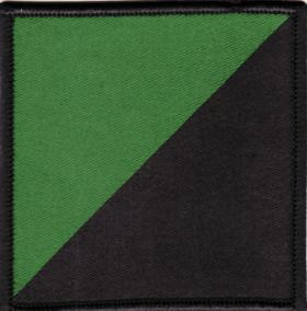 1st Battalion, Royal Irish Regiment DZ Flash
