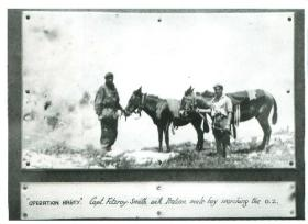 Captain Fitzroy-Smith with mules searching the drop zone for Operation Hasty.