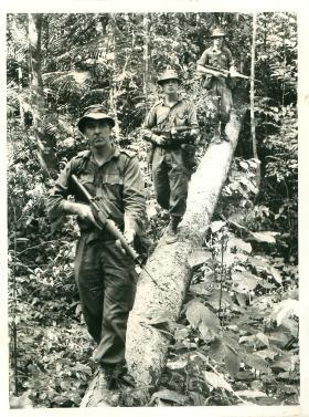 Jungle patrol, Borneo 1965.