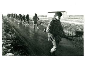 Argentinian prisoners are led away by British paratroopers.