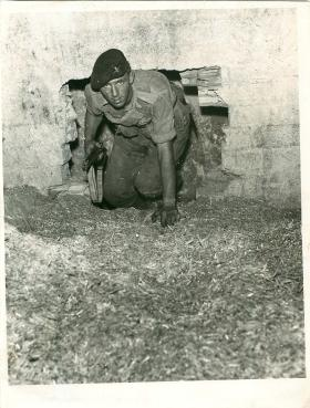 A paratrooper searches a farmhouse in Cyprus.