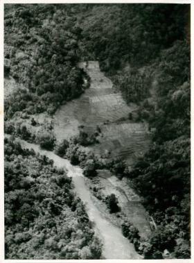 Drop zone in jungle clearing for exercise during operations in Malaya.