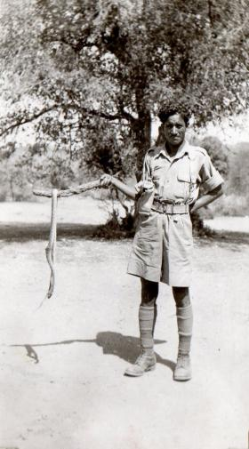 Soldier holds snake on stick, circa 1942