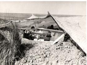 A 25 Pounder of 33rd Para Field Regt preparing for action El Cap 1956