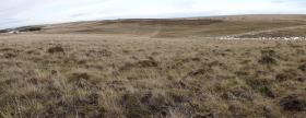 From B Coy 2 PARA position looking towards Gorse Line, 13 June 2012.