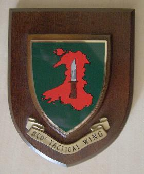 NCOs Tactical Wing Brecon Plaque