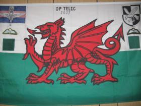 Op Telic Flag 2003