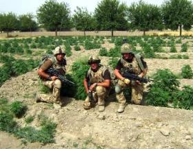 Medics on patrol, Musa Qala, Afghanistan, 2008.