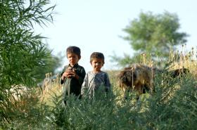 Children in Zabul, Afghanistan 2008