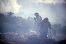 The Fog of War - The Bower, Darwin Hill