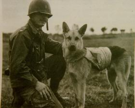 Lt Peter Baranowski and Jaint de Mortimorney, a US patrol dog during the Second World War
