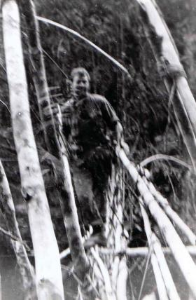 Para Guardsman on jungle bridge crossing, Sarawak, Borneo, 1964