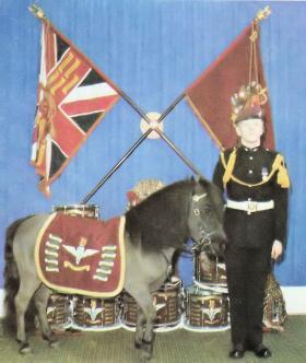 The Regimental Mascot with Pony Major, 1978