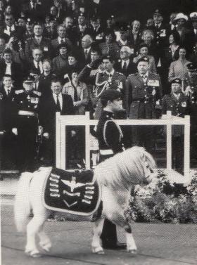 Regimental Mascot leading march past on Falklands Memorial Day 1st October 1982
