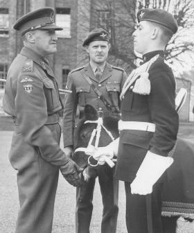The Regimental Mascot greets Lt Gen Down on his farewell visit to 2 PARA, c1955