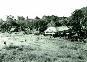 A Company, 2 PARA, Nibong Village, 1965.