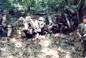 Training on jungle patrols for soldiers of A Coy, 2 PARA, Belize, 1983