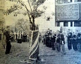 Remembrance at the 'Arnhem Tree' in Alexandra Palace Park, 22 September 1961.