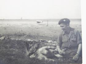 Para Dog with Cpl Walton, Germany, 1945