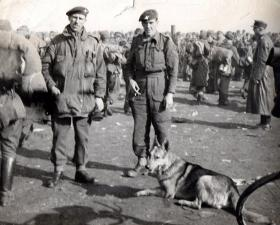 Two members of 13 Para Battalion with German POWs in background, c1945.
