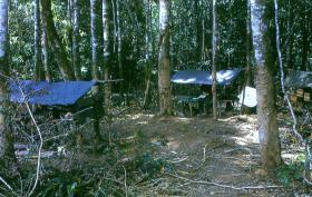 C Company, 2 PARA's camp near the border, Borneo, 1965.