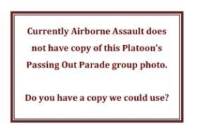 431 Platoon