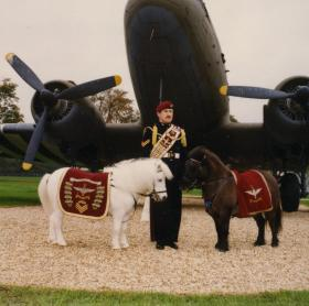 Dodger and Pegasus 3 in front of the Dakota, Aldershot, c.1990s