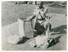 Sikh airborne officer kneels on the ground and packs loads for dropping.