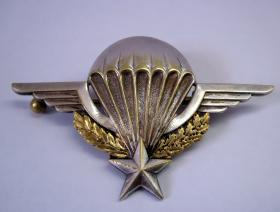 Sgt Jerry Griffin's French Wings, undated.