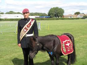 Pony Major Pte Adam Martin with Pegasus V at Duxford's Animal at War Day, 2013.
