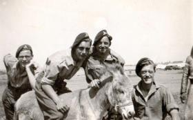 Members of 211 Airlanding Light Battery RA, Palestine, 1946.