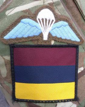 144 Parachute Medical Squadron RAMC (V) DZ Flash