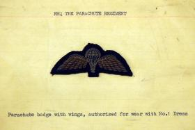 Parachute badge with wings