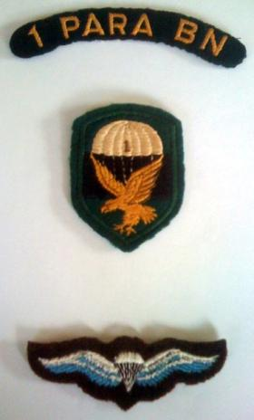 Insignia of The South African 1st Parachute Battalion