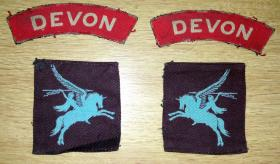 Insignia removed from Private Bristow's uniform.