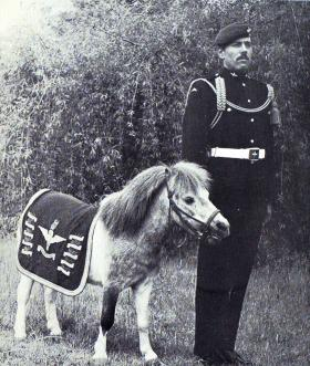 Pegasus 3 with Pte Nolan 1980