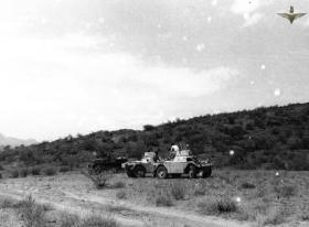 Ferret armoured cars Radfan c1957